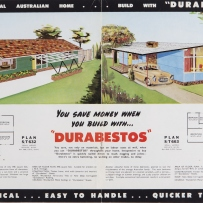 Double page spread with colour illustrations of two different houses, plans and text.