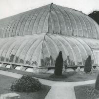 photo of the 'Great Stove' Conservatory at Chatsworth, which is a large glass building with some small shrubs around it.