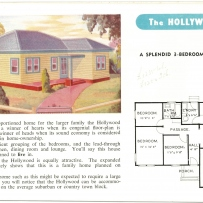 'The Hollywood'