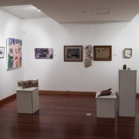 Meroogal Women's Arts Prize 2007, installation views