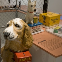Tails of the city: Sydney's passion for pets installation view
