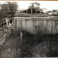 Woolshed  Rouse Hill Estate