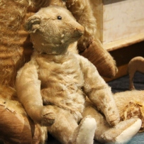 This is a photograph of a seated teddy bear