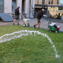 close up of a hand held hose watering The Mint Lawn prior to renovations