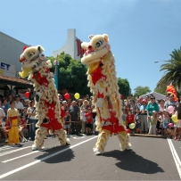 Lion Dragon dance performed by the Australian Yau Kung Mun (YKM) Martial Arts Association - Rituals and Traditions of Sydney