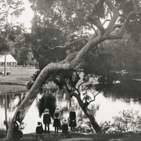 A group of children stand beneath a large gum tree. The flat waters of a river stretch out in the background with a small row boast approaching.