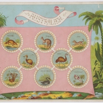 Zoological Lotto: Australien board