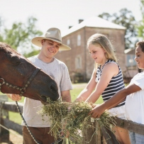 Children standing on a fence feeding a horse at Rouse Hill Farm