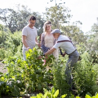 Three people in kitchen garden looking at plants.