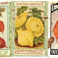 Three colour-illustrated seed packet covers labelled: early short horn carrot, custard shaped vegetable marrow and early horn carrot.