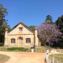 The carriageway and drive of Vaucluse House, with Mowvember moustache in the background