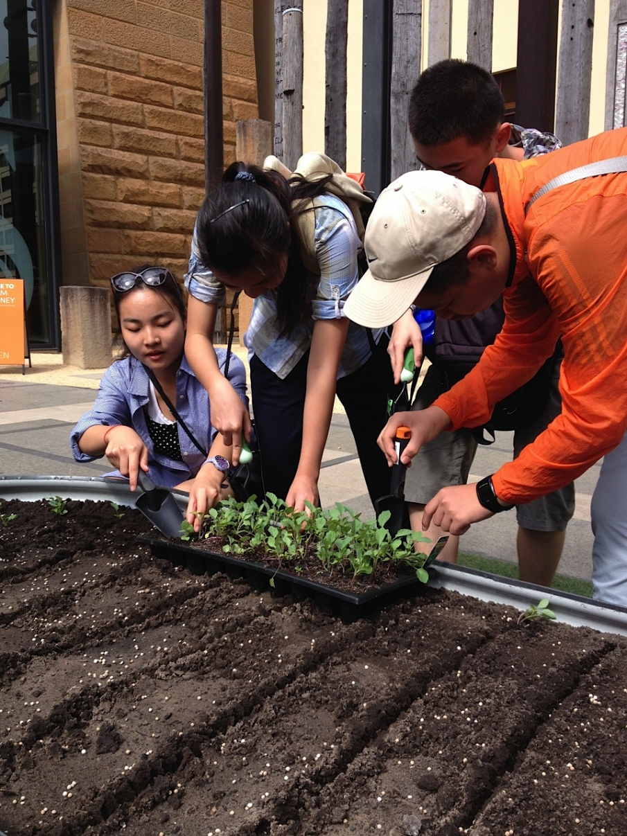 Visitors helping with planting the market garden.