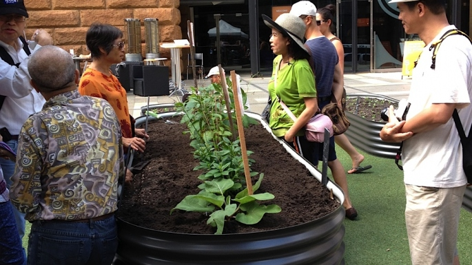 Market gardener and visitors talking about the garden