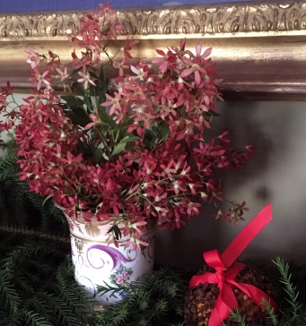 Closeup of christmas bush foliage and other greenery on mantelpiece.
