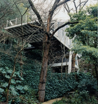 Sandstone steps and entrance to the Butterfly House