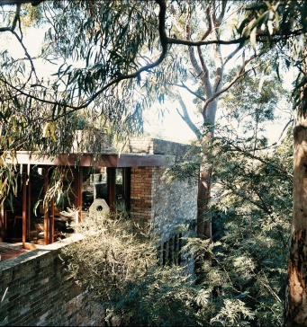This is a photograph of a light brick house set amongst native trees