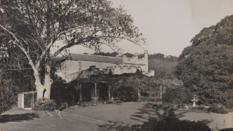 Black and white photograph of Vaucluse House with large fig tree and vine covered verandah