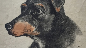 Illustration of head of black and tan dog.