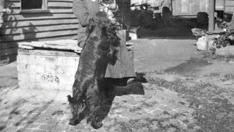 Woman with large hat, playing with black dog is sitting on the lid of a partly exposed underdround cistern or water tank in the grounds of an old house.