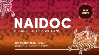 Banner promoting NAIDOC week 2018 Because of her we can.