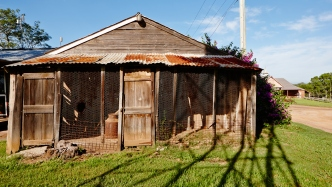 Woolshed, Rouse Hill House and Farm