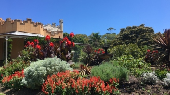 The clear blue sky contrasts with the red blooms of the summer display in the Vaucluse House Fountain Garden
