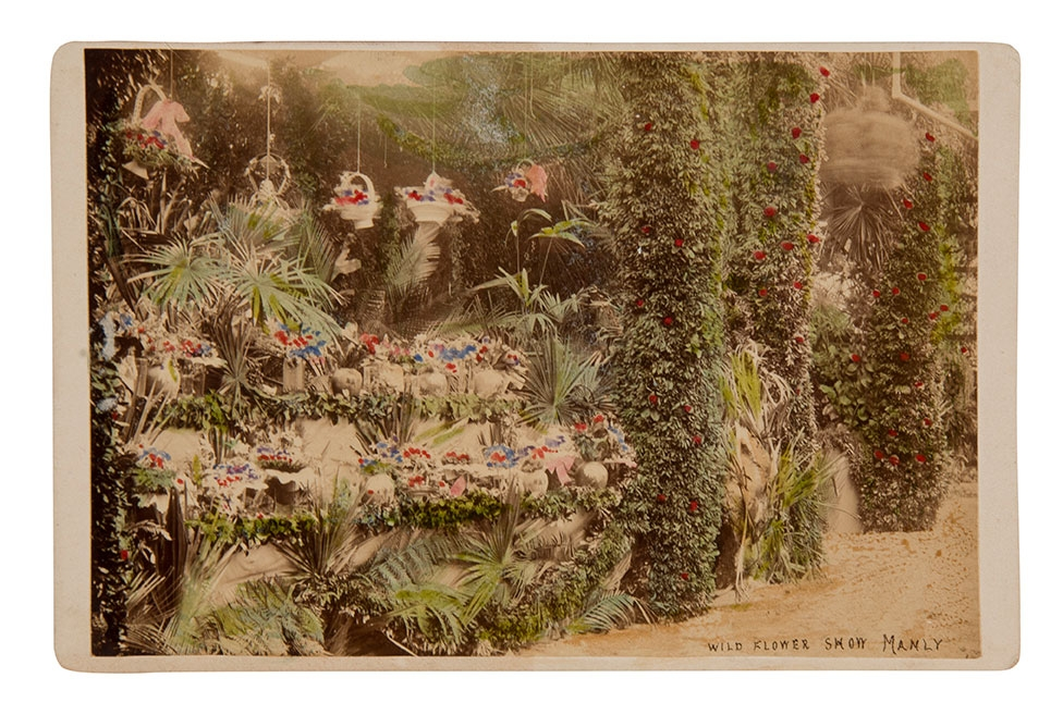 Handcoloured photograph of flower show.