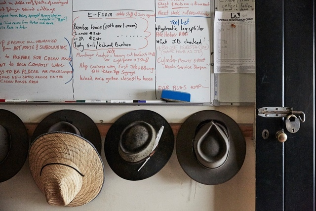 Photograph of gardeners hats hanging below a whiteboard