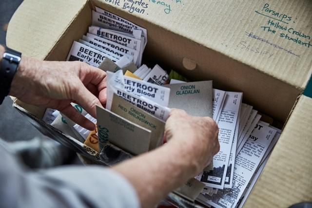 Photograph of a person looking through a box filled with seed packets