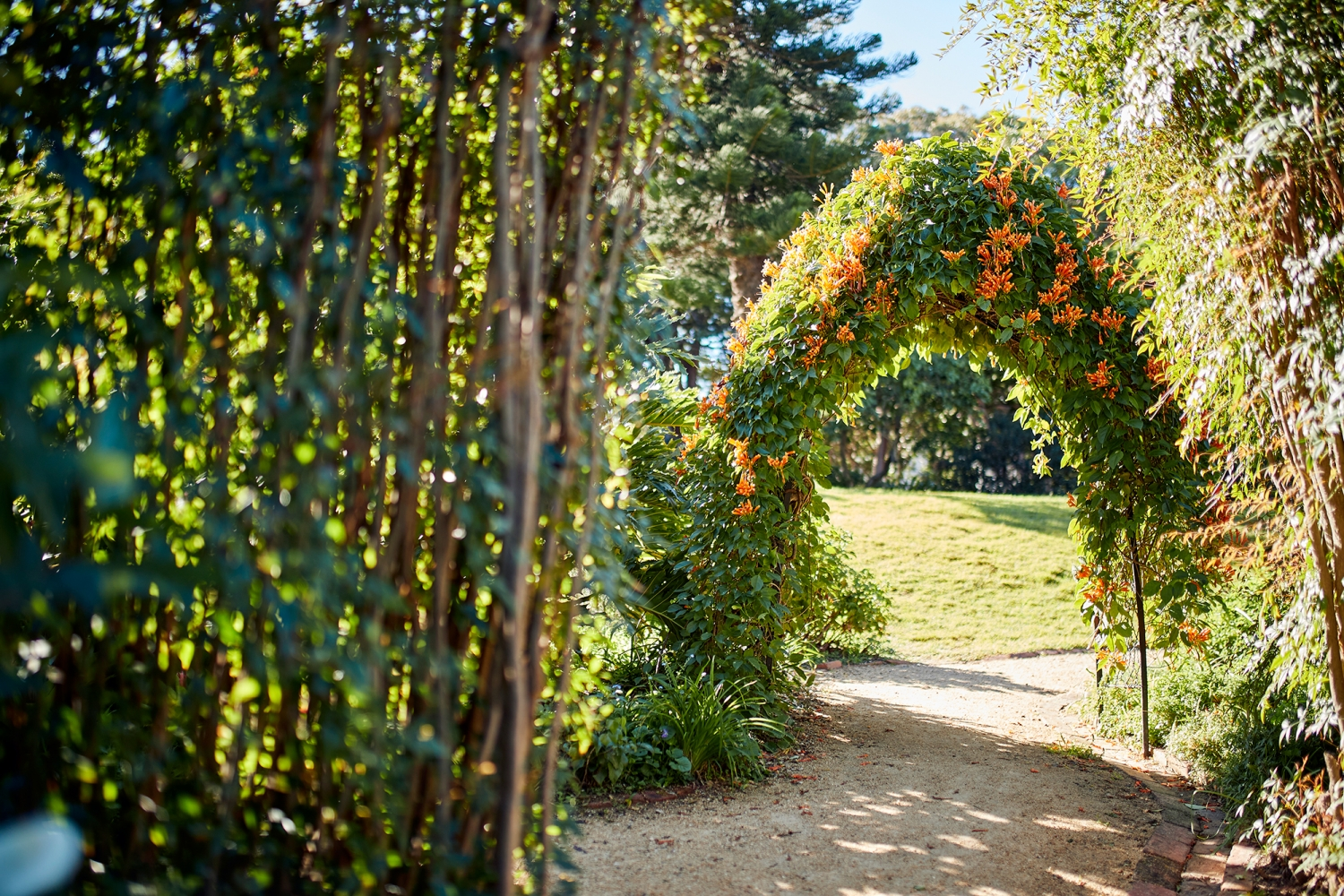 View through floral archway along garden path.