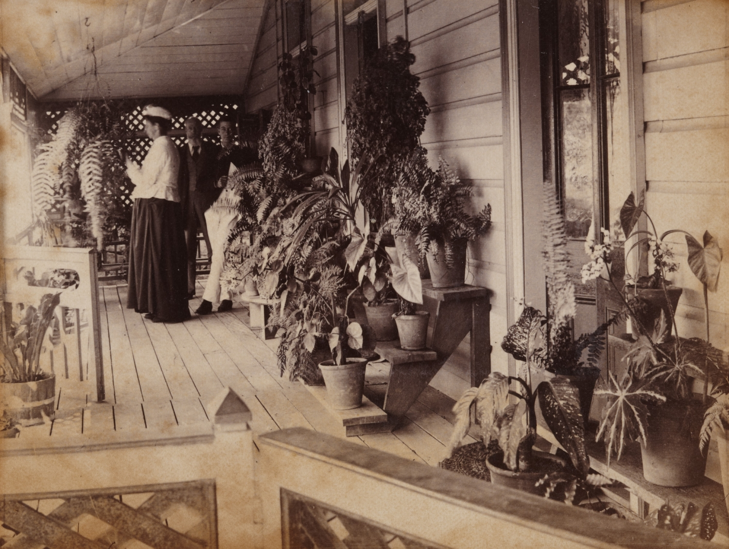 three people stand on the verandah surrounded bu lush plants displayed on timber plant stands