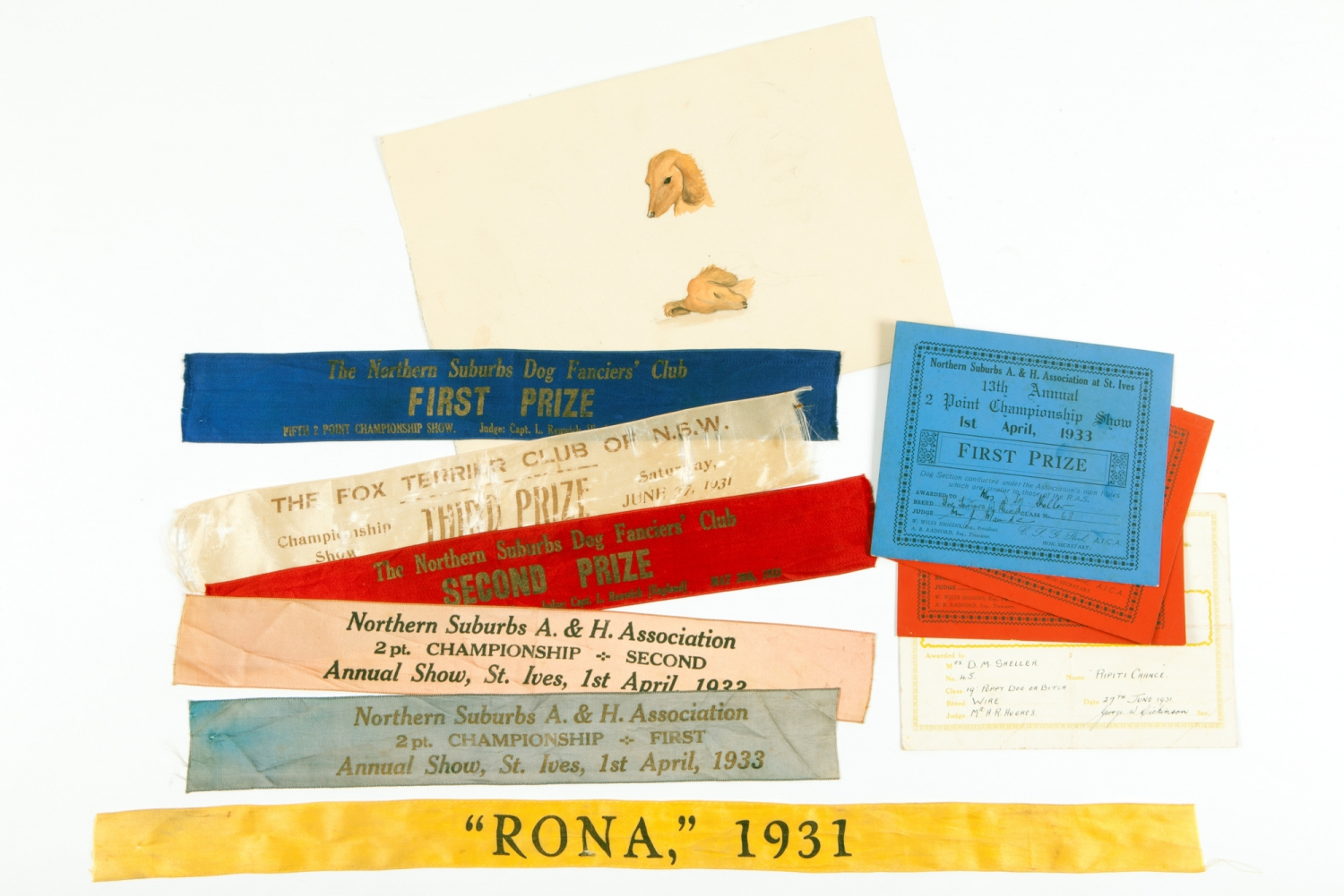 Selection of coloured ribbons with names of dogs and a picture of a dog.