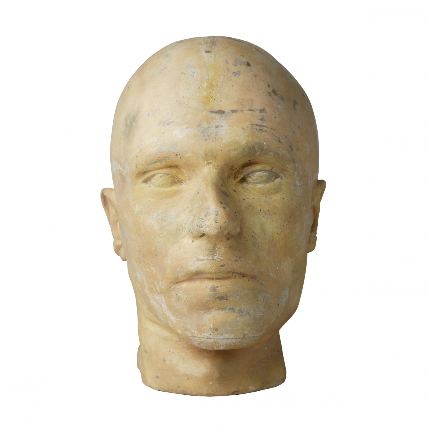 Cast of man's head with no hair.