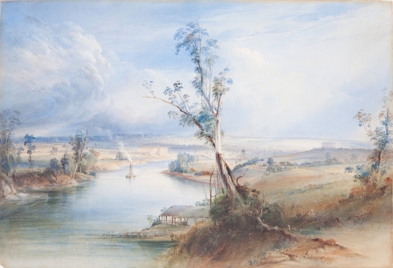 Watercolour of river bank with large tree in centre of painting.