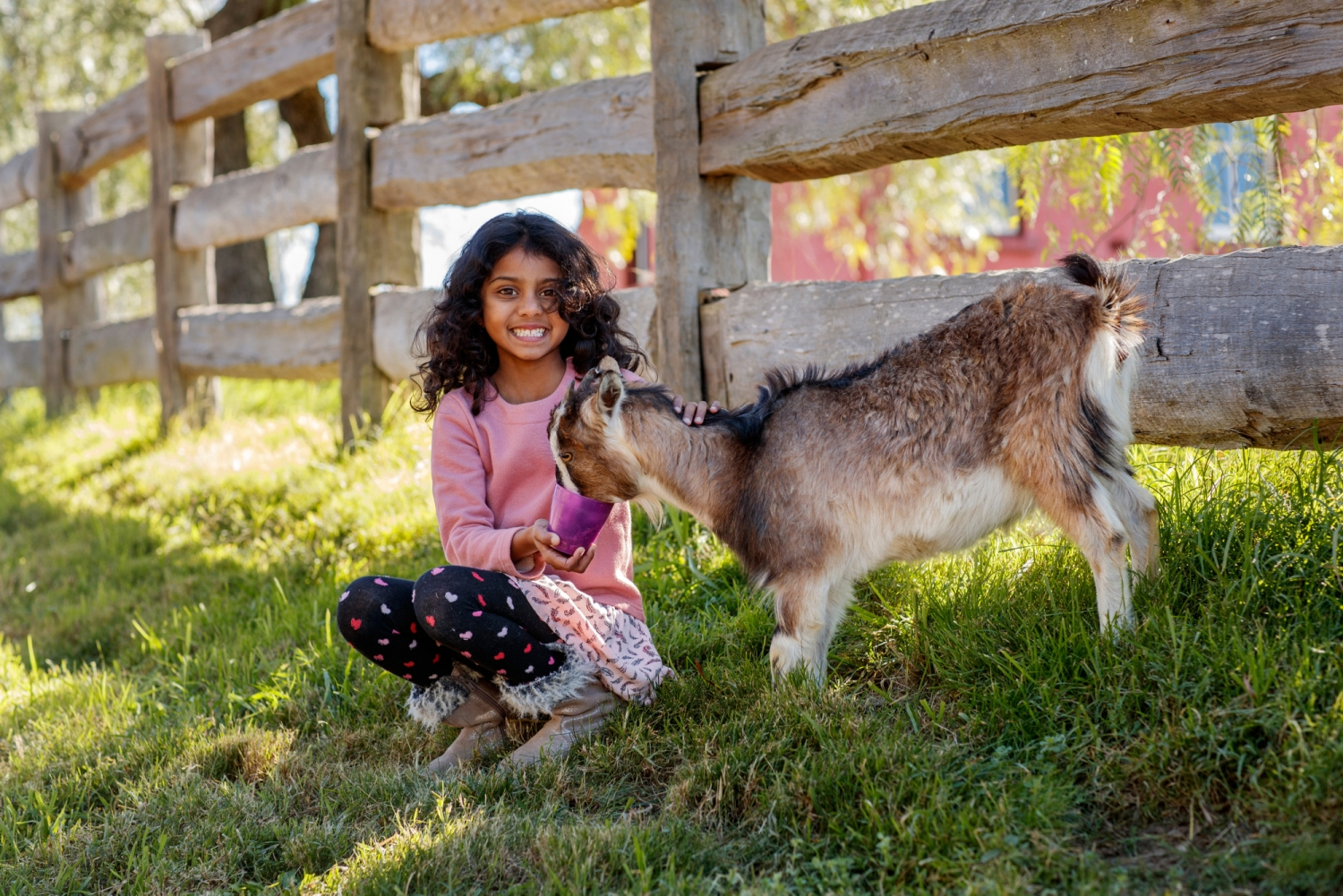 Girl holding a goat in front of fence
