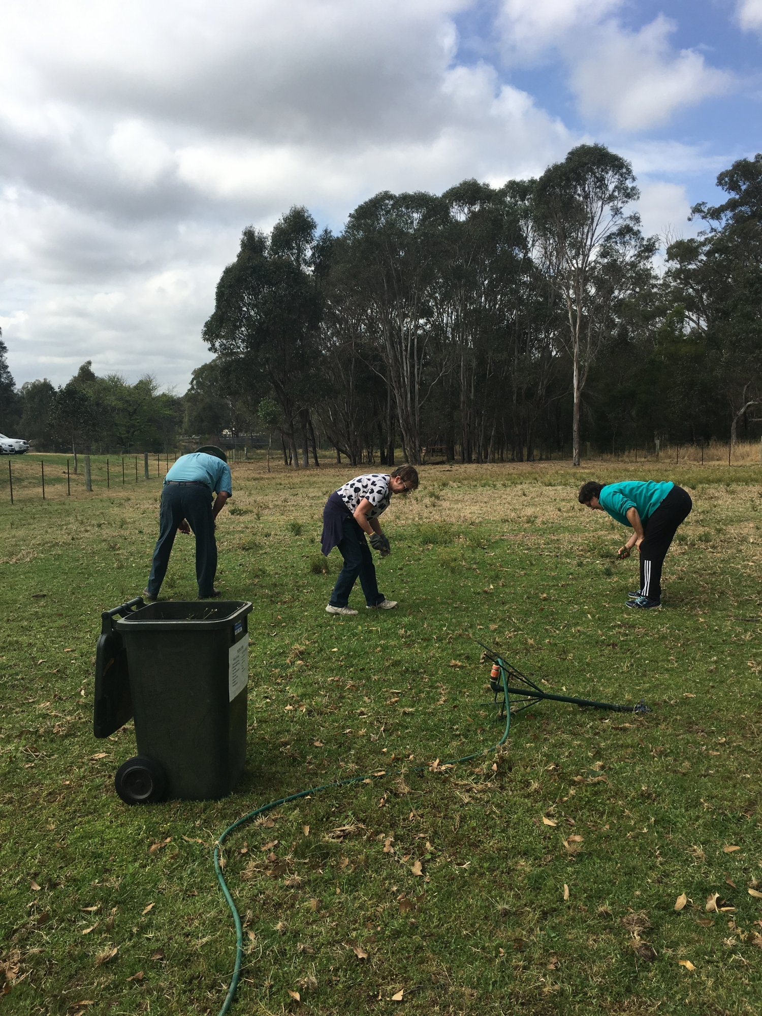 Staff and volunteers pulling fire at the Rouse Hill House and Farm working bee
