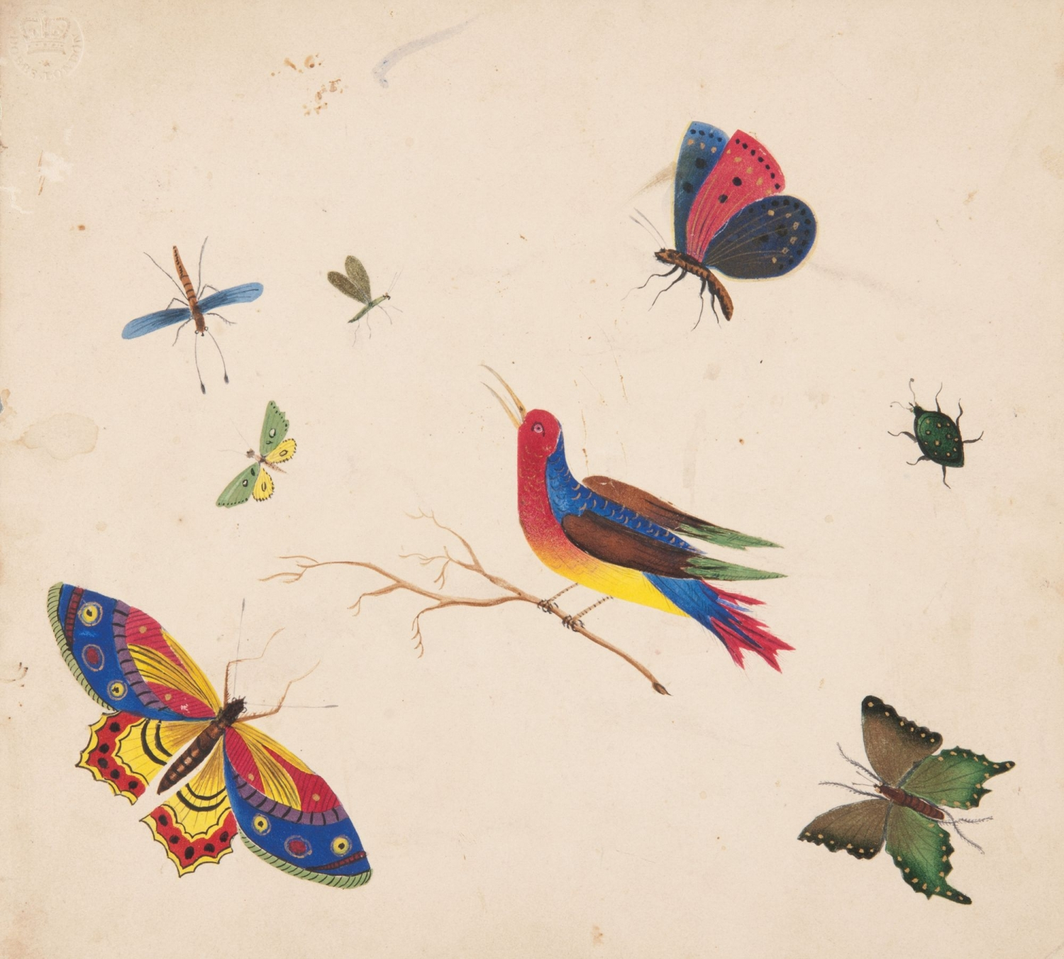Bird and insects poonah painting