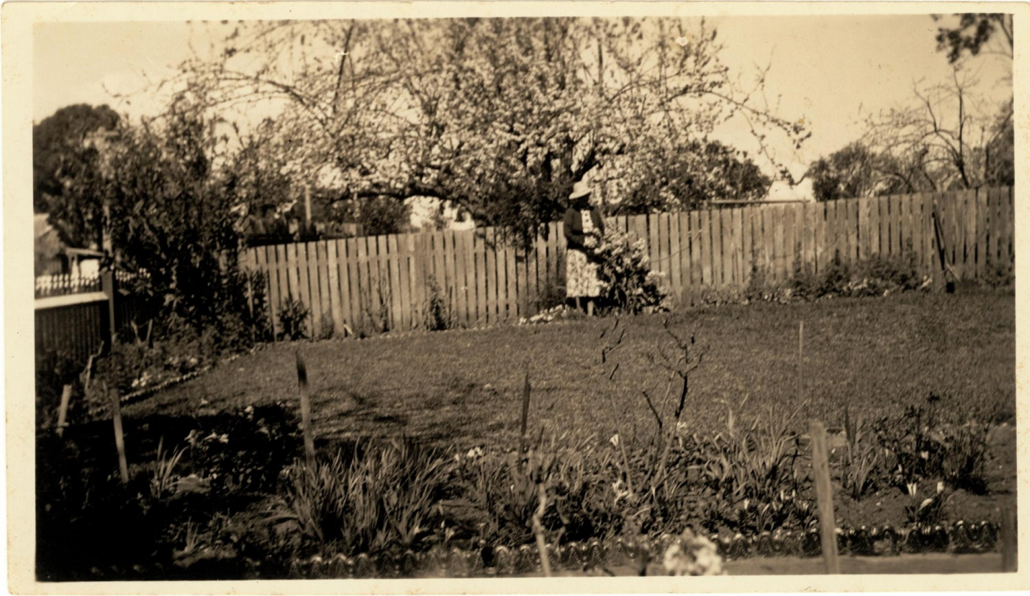 Black and white photo of woman in garden, in front of wooden paling fence.