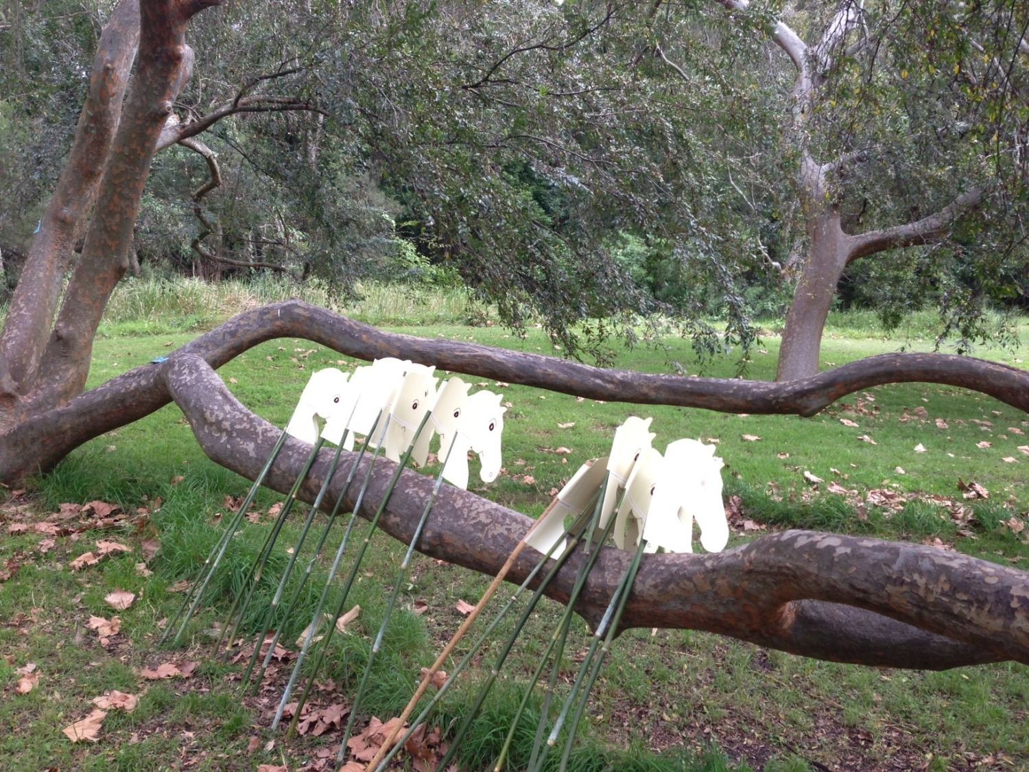Hobby horses leaning against a tree, ready for kids to ride