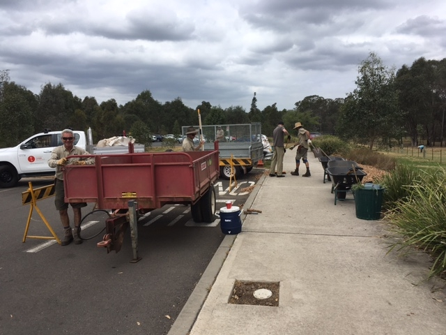 the SLM gardens team and volunteers mulching the rouse hill house car park