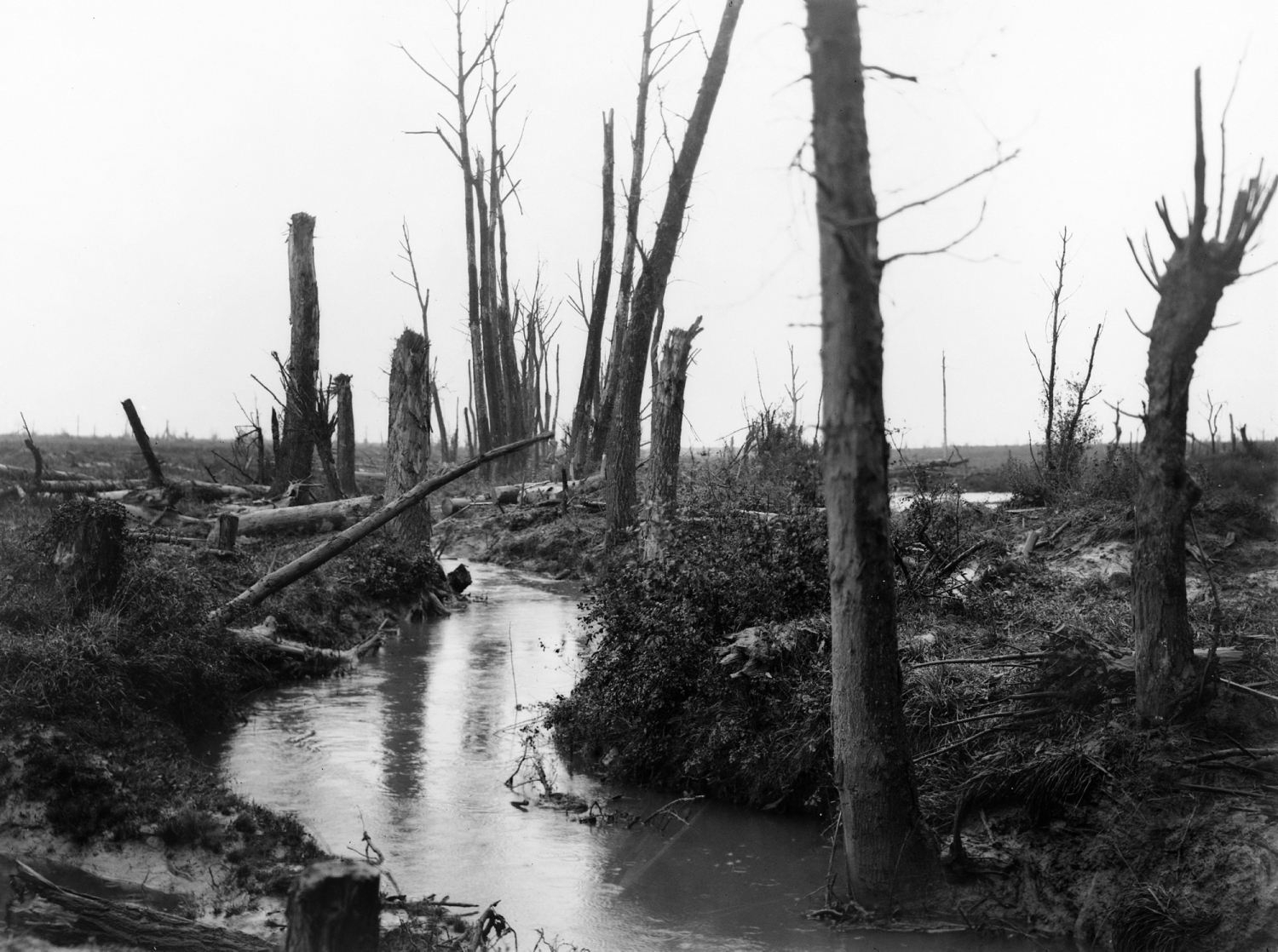Stark black and white photo of battlefield with river.