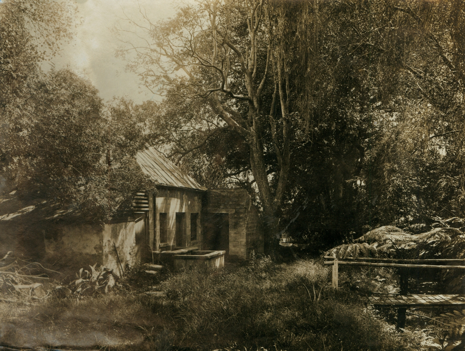 Black and white photograph of a sandstone building and encroaching trees