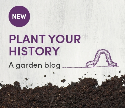 Plant your history Garden blog - promo tile.