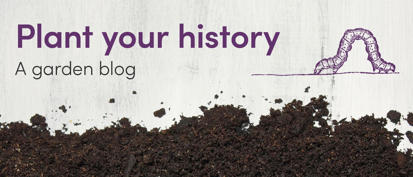 Plant your history: a garden blog tile with dirt and caterpillar design.