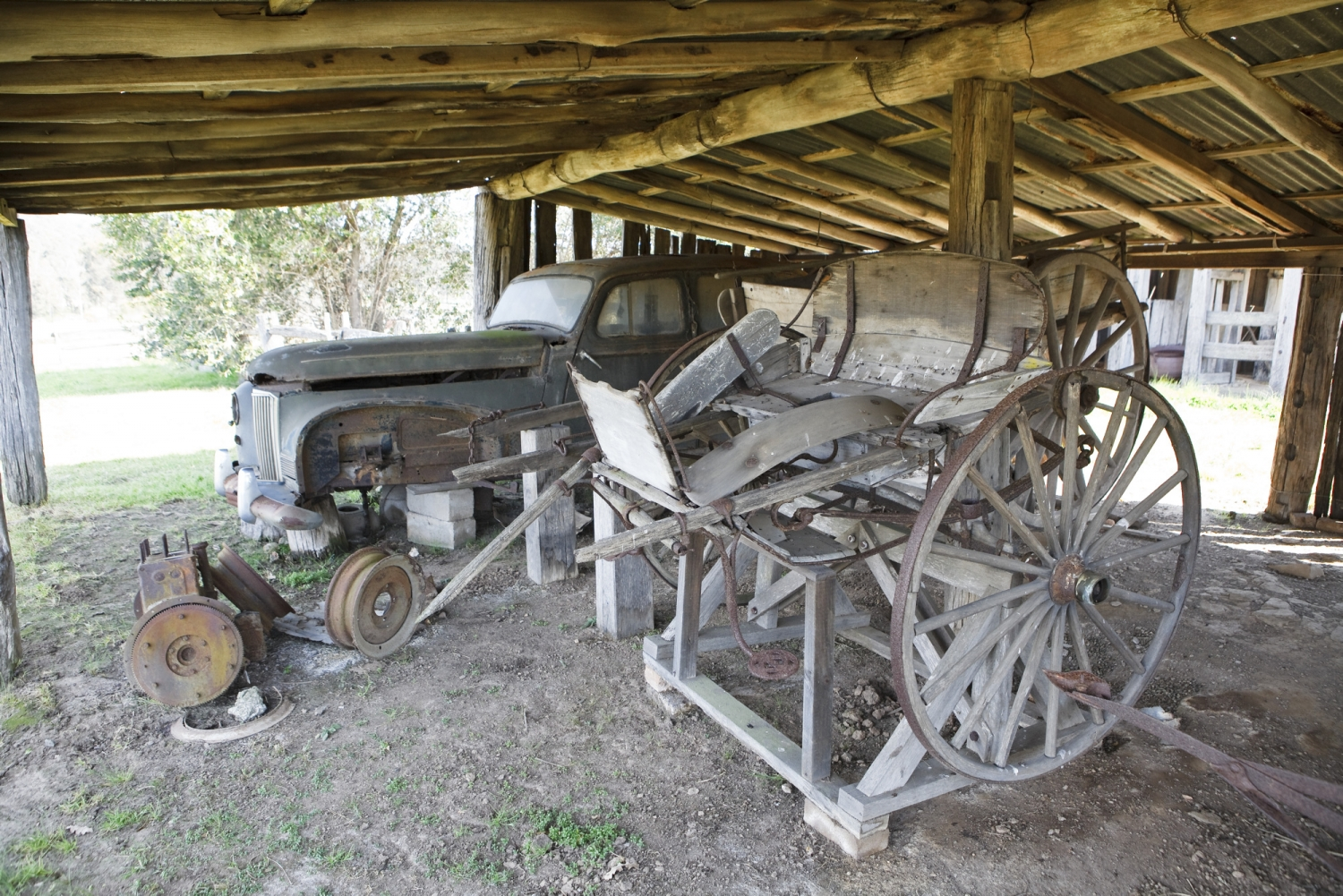 Two old dilapidated vehicles in low-roofed timber and iron roofed shed.