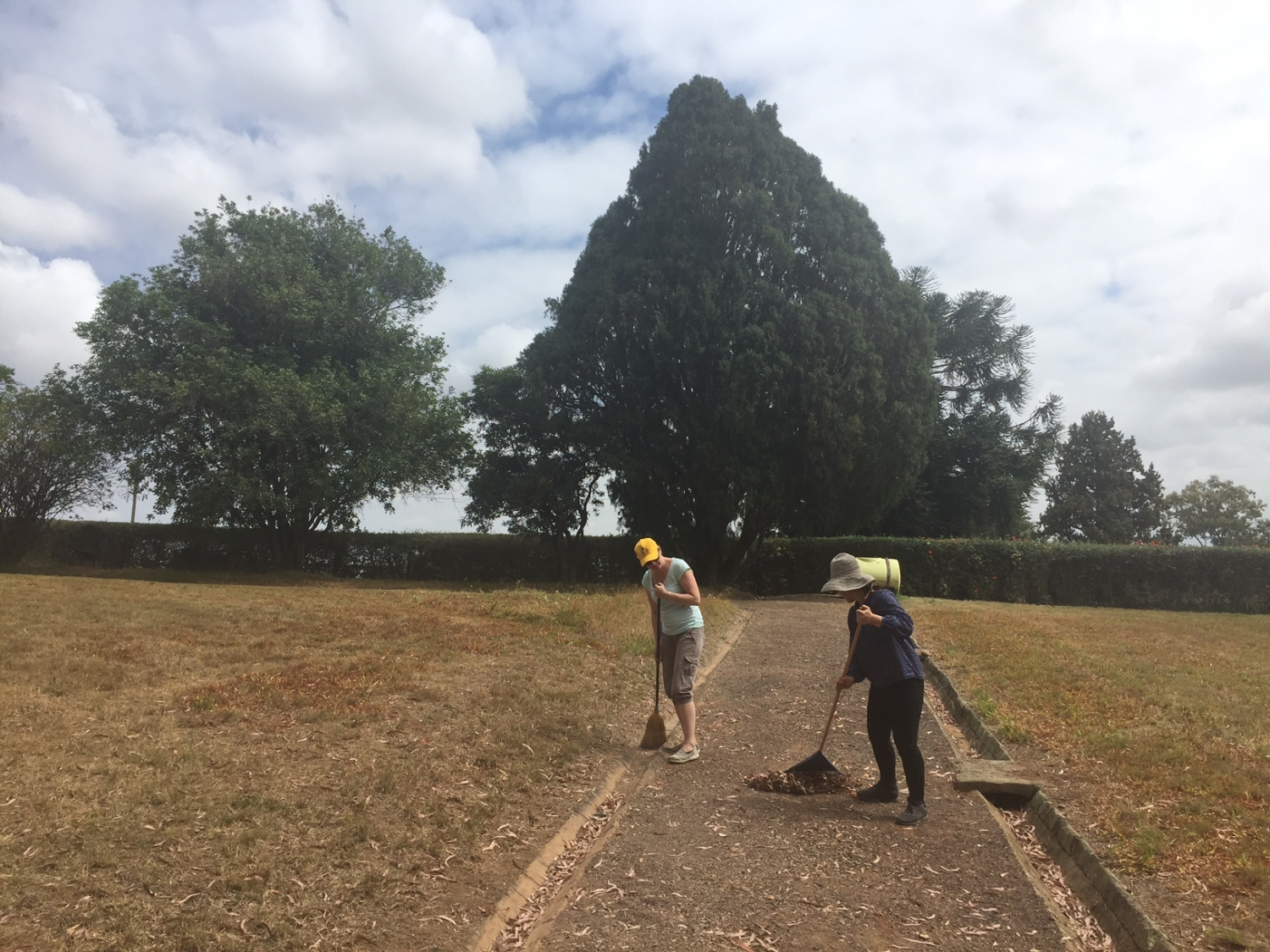 Raking at the Rouse Hill House and Farm working bee 2017