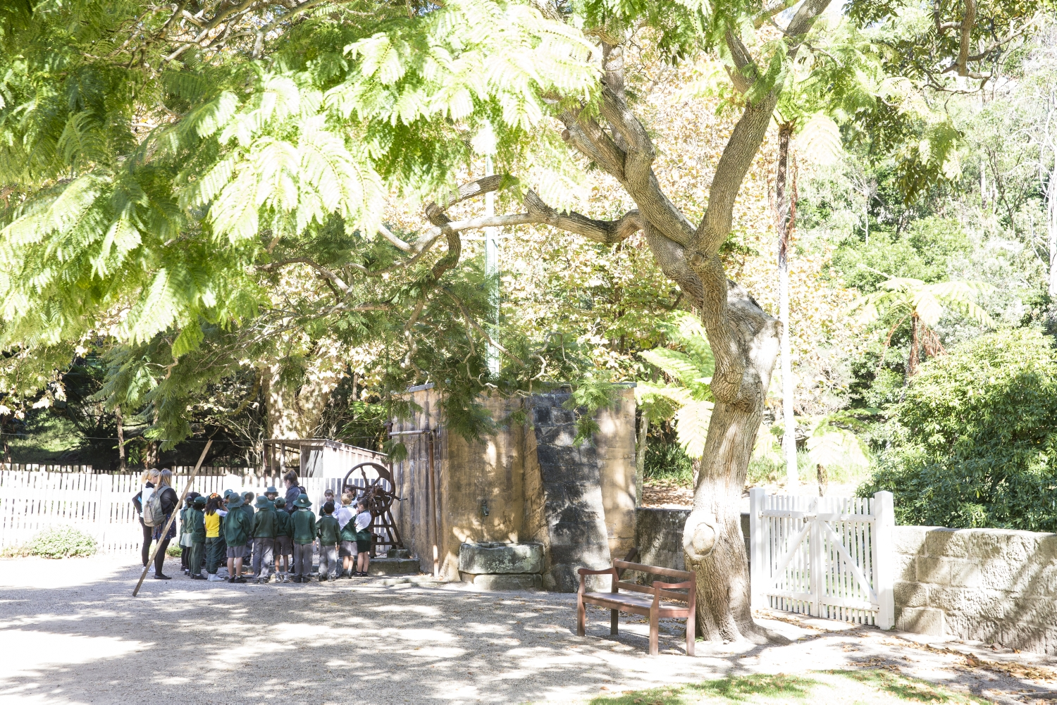 Group of students under tree.