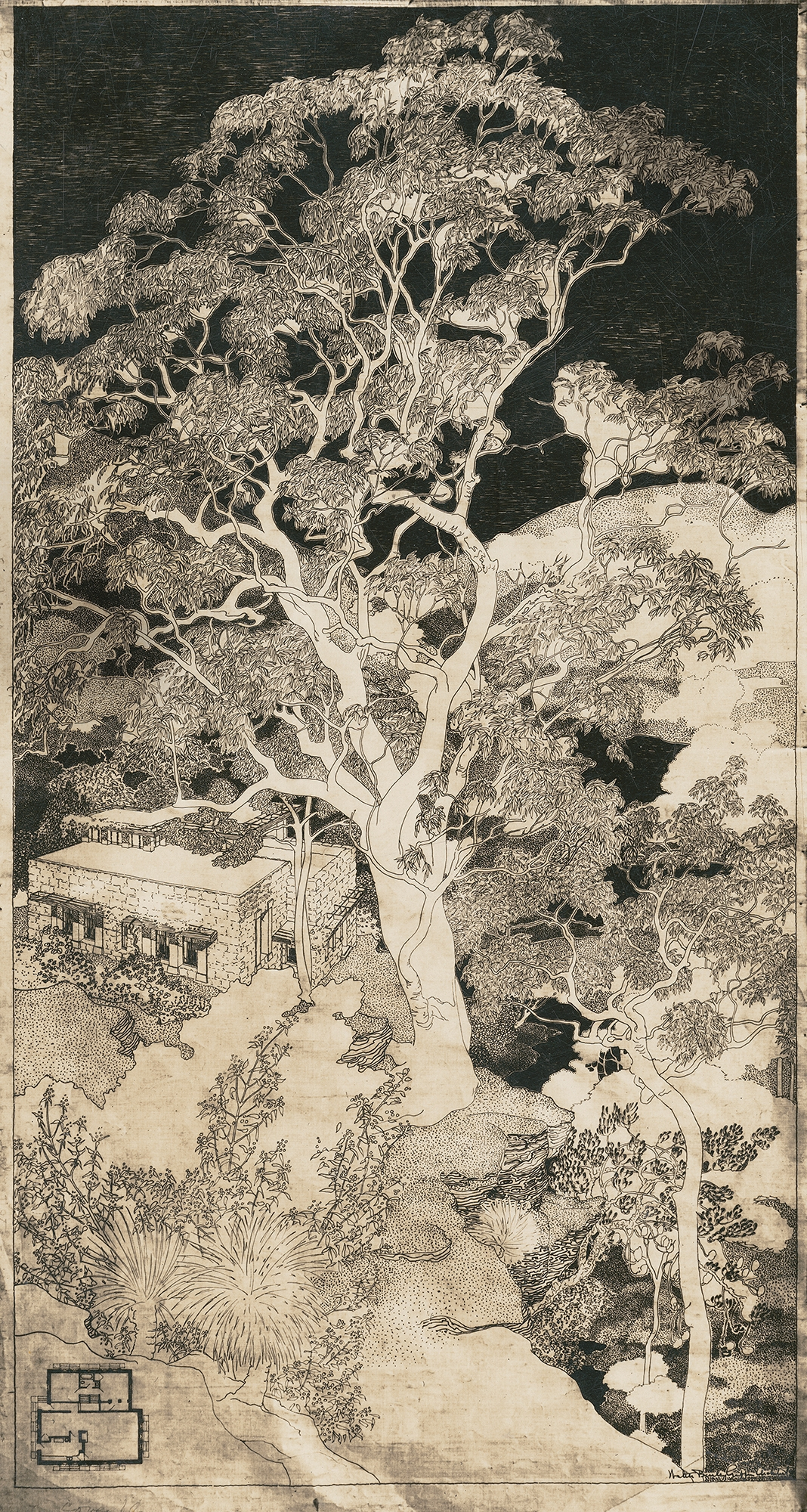 White on black illustration of tree and house.