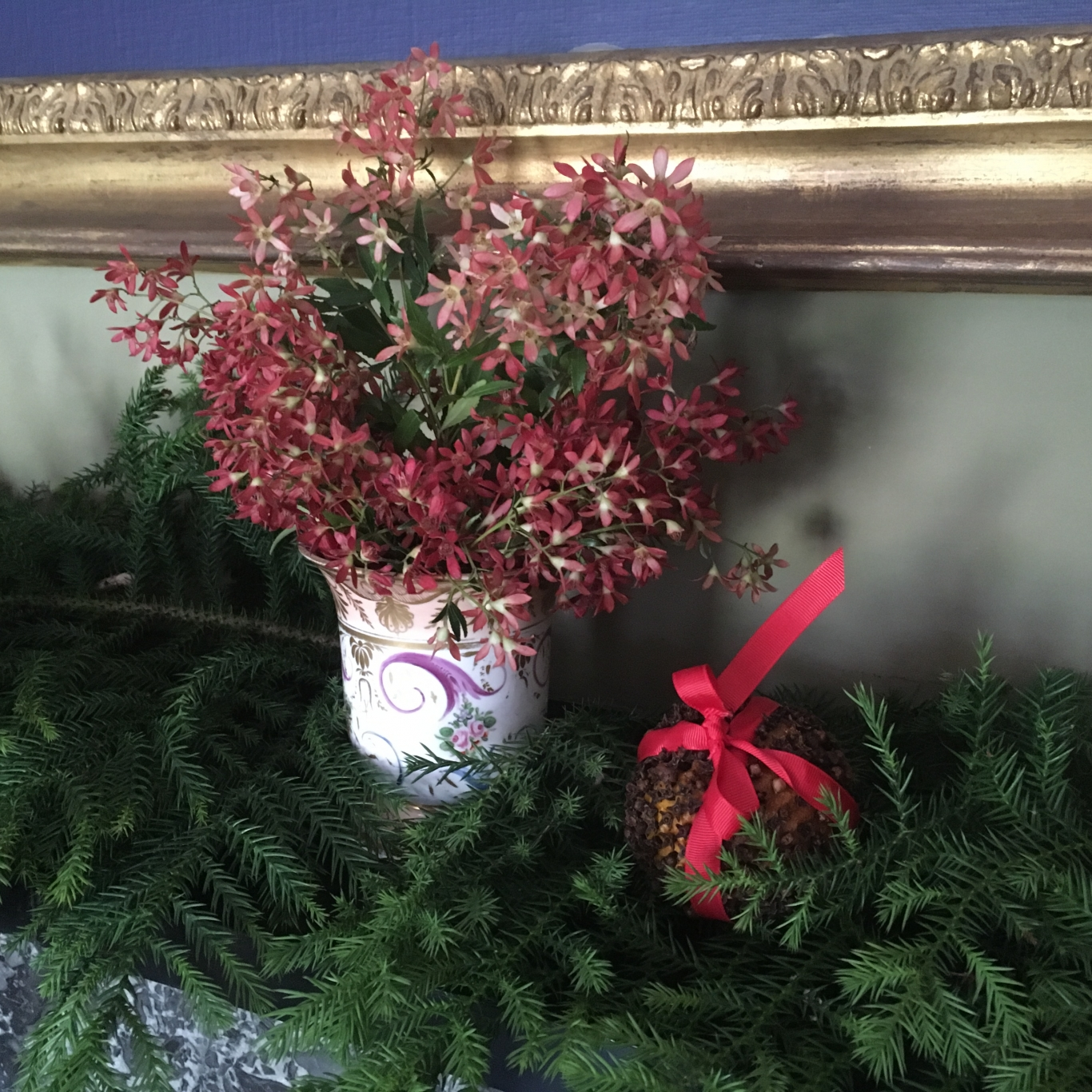Closeup of floral display containing Christmas bush.