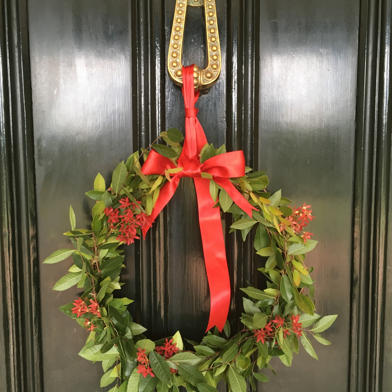 Closeup of foliage wreath hung by red ribbon from door knocker.